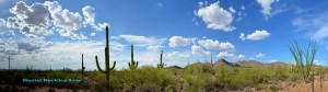 Tucson-Mtn-Pan-071112-04c-crop-sw-dba
