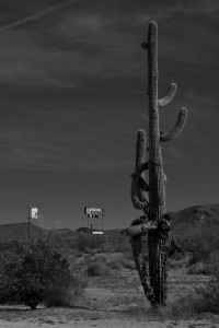 Papago-TP-grayscale_DSC5640-sw