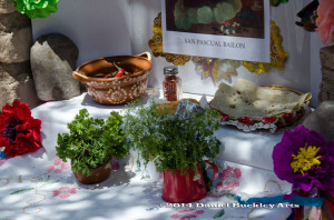 Tucson Tortilla Festival 2014