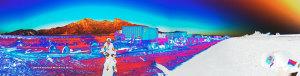 Rowena-wreck-093014-1266-06-1283cpEXCvd1RVS-sw-dba
